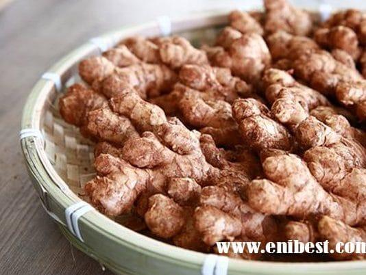 Ginger Farming