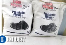 Plantain Flour Business In Nigeria eni best
