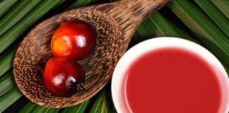 red palm oil business