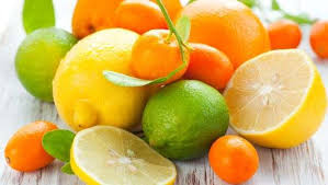 Citrus fruit, citrus farming